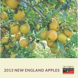 2013 New England Apples wall calendar